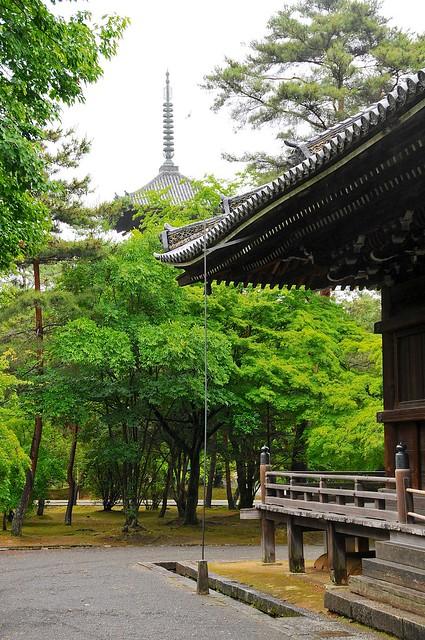 Ninnaji temple & Pagoda