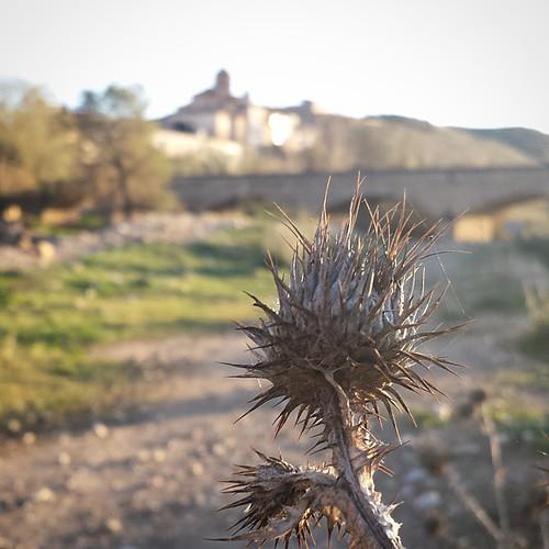 Un paseo #otoñal por mi #pueblo #Castelnou...
