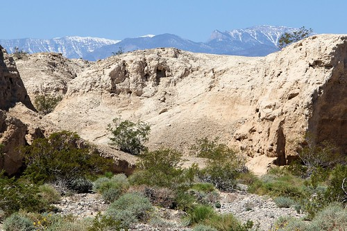 Tule Springs Fossil Beds – Middle Section