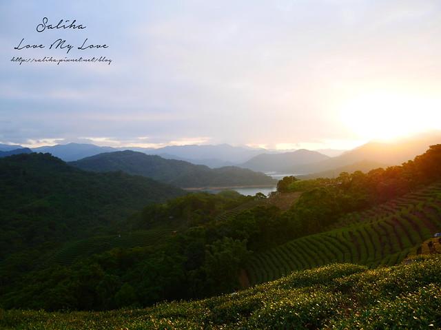 新北石碇景點千島湖八卦茶園 (3)