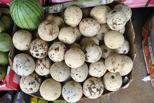 23 Manzana de madera en Kandy (31)