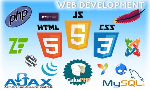 ctcs_web_development_services_puducherry