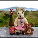 Dec 11 -Ted Red and Monteith's Bohemian Pilsner by Reflective Kiwi %-)