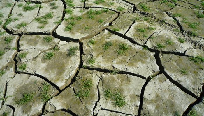 台灣遭逢1947年以來最嚴重旱災,多座水庫見底。民眾應認真節水。圖片來源:公共電視我們的島616集,搶救下一滴水。