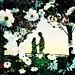 二人の秋 -a story in a autumn field by Hodaka Yamamoto