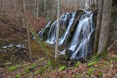 Falls on Big Creek in SW Virginia....aka Cobweb Falls