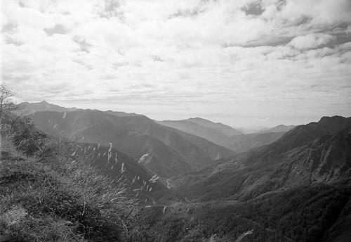 blackandwhite bw mountain film monochrome analog forest kodak path olympus olympusom2 zuiko 黑白 om2 玉山 森林 登山 kodak400tx 底片 crystalscan7200 kodakfilms 7250u primefilm7250u hzuikoautow24mmf28
