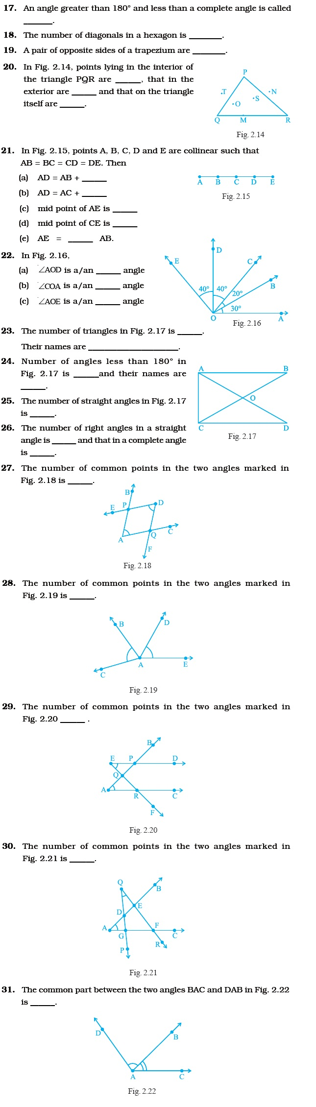 class 6 important questions for maths geometry