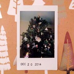 12.20.2014 :: Christmas #1!