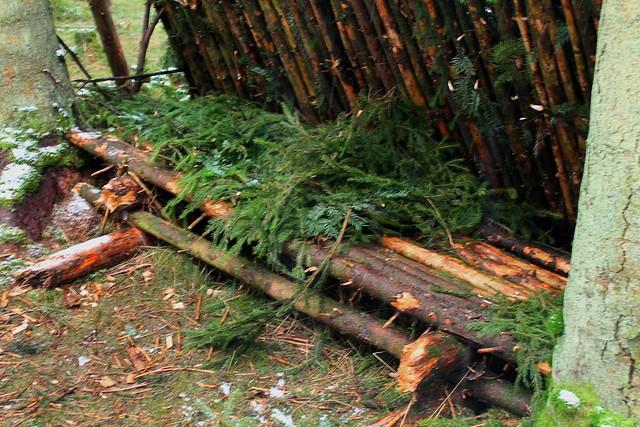 Naturligt lean to shelter med hævet seng   bushcraft forum