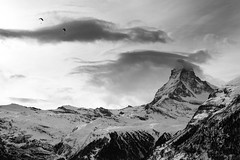 Paragliders over the Matterhorn at Sundown