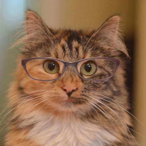 Wylla_Glasses_4