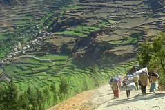 Nepal, Trekking zum Rara See ursprüngliches Trekking im Westen des Himalaya von Jumla nach Simikot