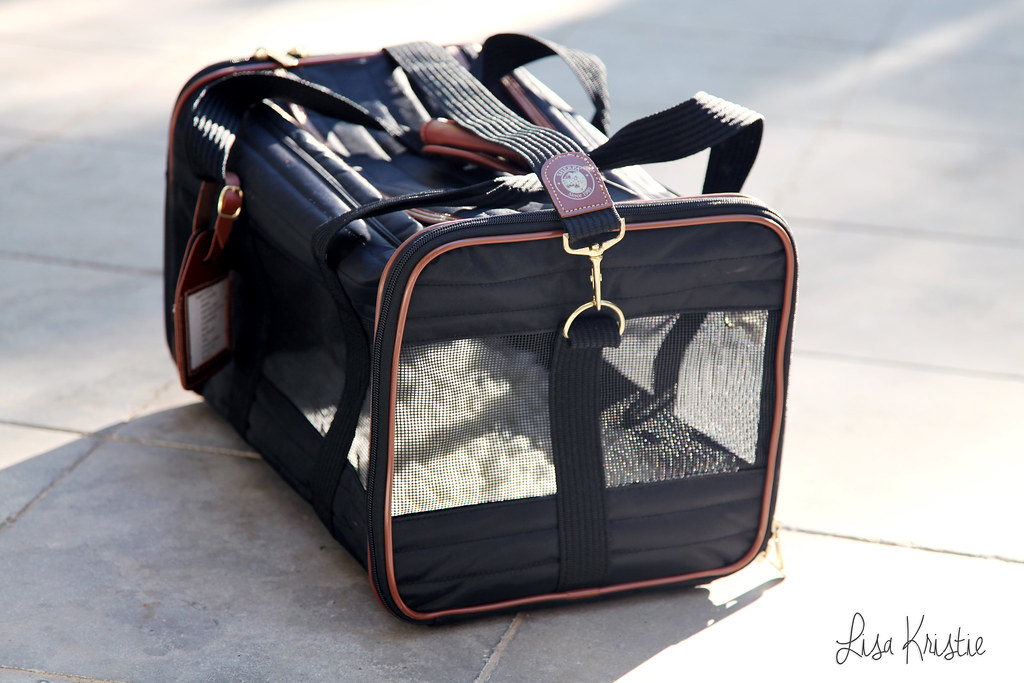 deluxe dog carrier by Sherpa black size large model travel luggage product review