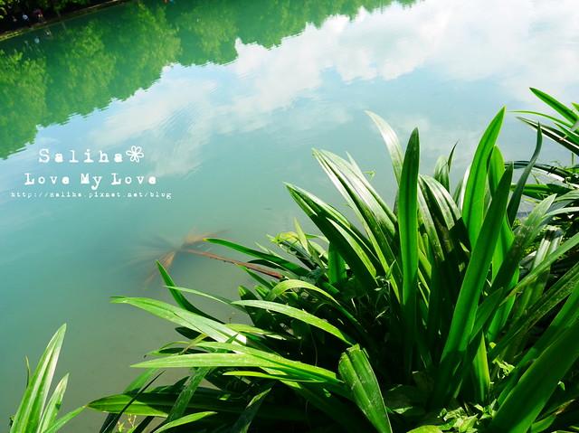 花蓮景點雲山水 (11)