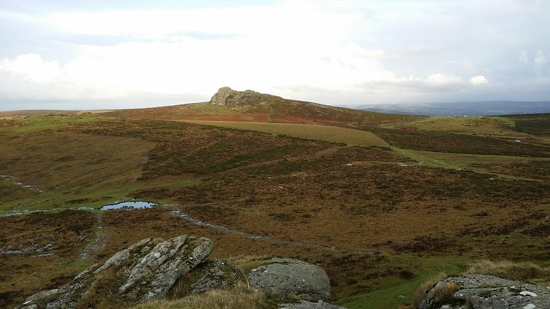 Haytor from Saddle Tor #dartmoor #sh