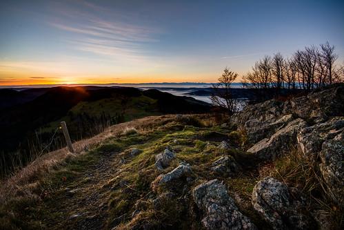 mountain black fog forest sunrise deutschland nebel herbst schwarzwald badenwürttemberg herzogenhorn bernauimschwarzwald