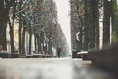 First Snow #325/365