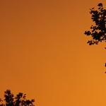 Golden-Orange Sunset Sky