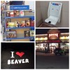Utah! You so crazy! Themed gas stations! Seats for kids in the bathroom! Towns named beaver! Bookshelves just for Mormons!