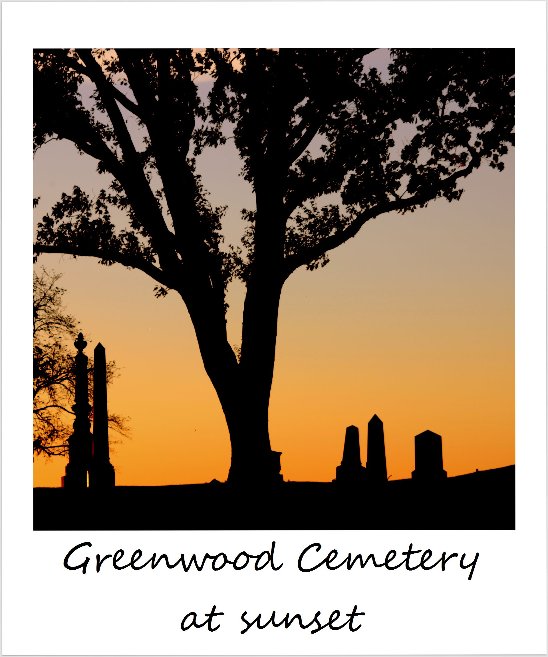 polaroid of the week usa new york city brooklyn greenwood cemetery