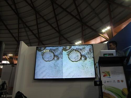 經由Fluid lensing技術,有效消除水面波紋的干擾