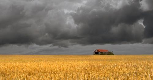 uk sky cloud storm field wales barn canon eos farm wheat cymru cardiff crop caerdydd glamorgan 5d agriculture sthilary cowbridge wentloog stevegarrington