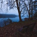 [253] Foggy Nightfall