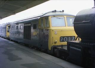 Minehead Maybacher - D7017