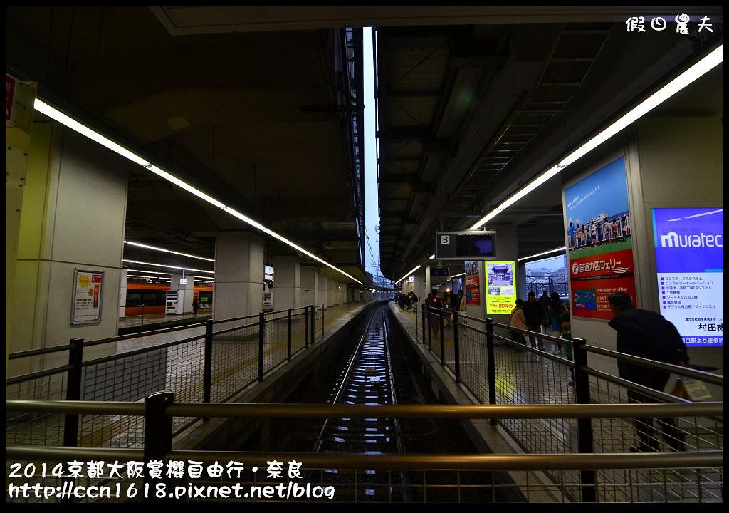 2014京都大阪賞櫻自由行.奈良DSC_0786