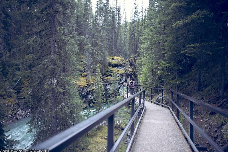 hiking trail in Banff