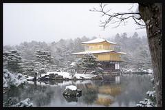 日本京都-金閣寺-雪.40