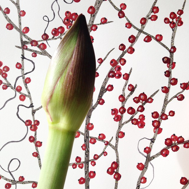 amaryllis and winterberry branches.