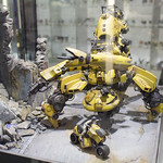 GBWC2014_World_representative_exhibitions-13