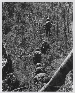 Marines of G Company, 2d Battalion, 4th Marines near Hill 479, August 1967