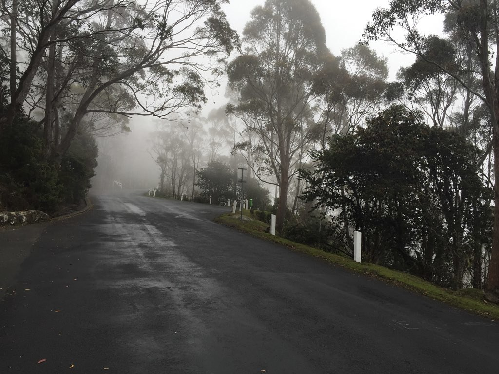 On the way up to Mt. Wellington