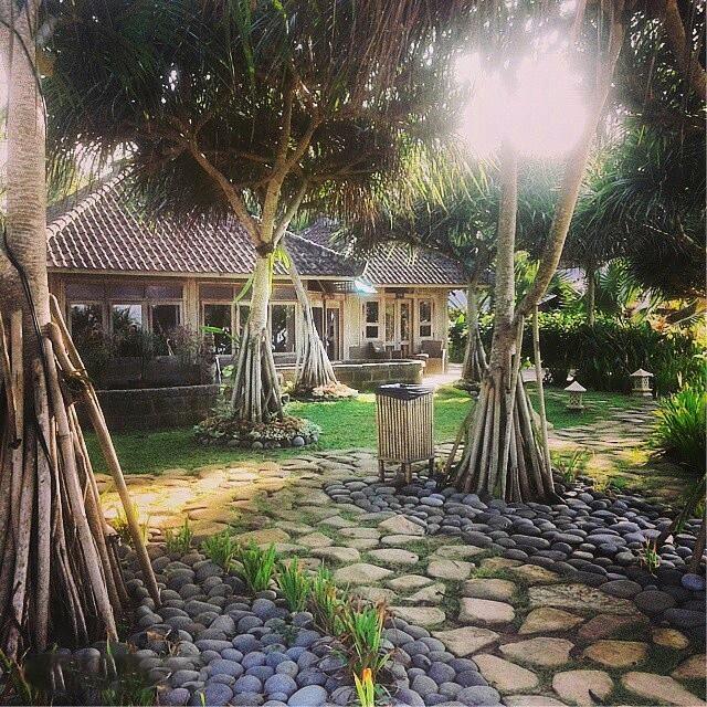 Bali pondok pitaya cr pondokpitaya.com