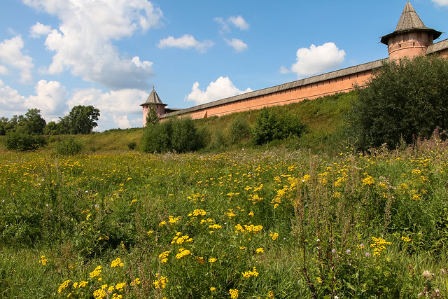 Wall of Spaso-Evfimiyev Monastery, Suzdal, Russia スズダリ、スパソ・エフフィミエフ修道院の外壁