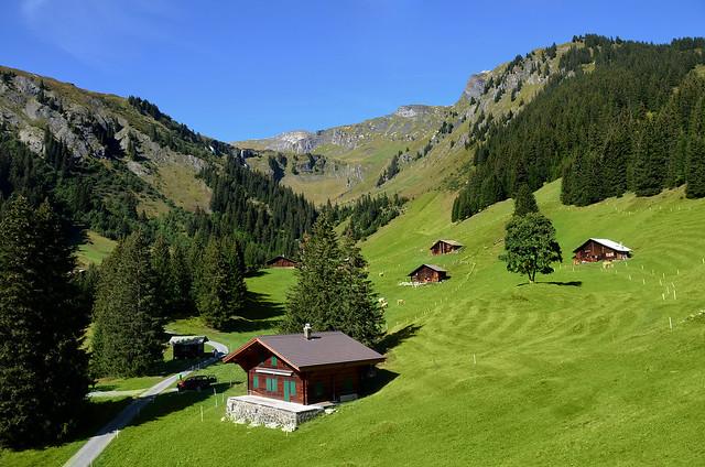 Casitas de madera sobre preciosas praderas verdes en Suiza