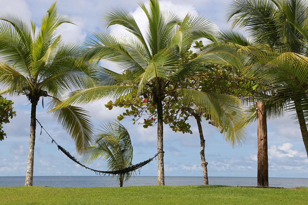 Imagen Costa Rica 15707804890 6Ceb23Ddbd B