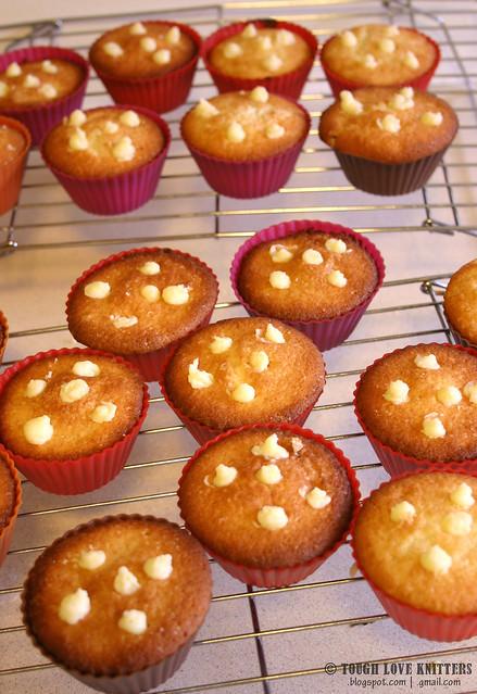 Boston Creme Cupcakes (15)