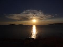ΘΑΛΑΣΣΑ / SEA