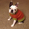Haley in her new sweater