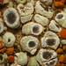 Small photo of Acarospora stapfiana