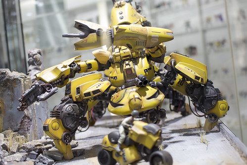 GBWC2014_World_representative_exhibitions-18