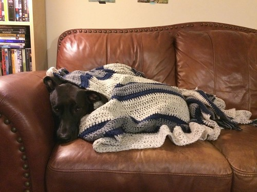 Akira with crochet striped navy grey oatmeal blanket