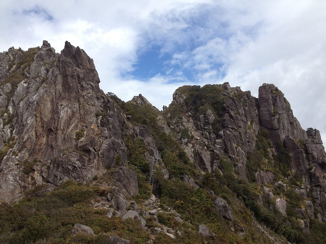 metal ladder to the Pinnacles