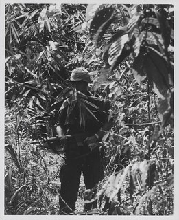 Marine of G Company, 2d Battalion, 4th Marines near Hill 479, August 1967