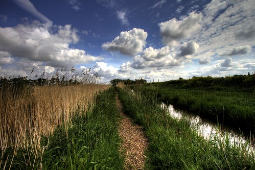 sky holland netherlands field grass canon landscape photography eos outdoor nederland 7d serene paysage landschaft rik landschap plassen efs1022mmf3545usm tiggelhoven ackerdijksche