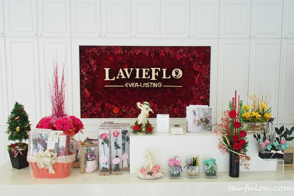 leviflo (2)